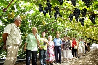Historische druivenkas